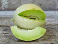 Дыня Нектарные росы / Honeydew Tam Dew Melon
