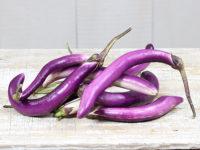 Баклажан Фиолетовый Феньюань / Fengyuan Purple eggplant / Solanum melongena