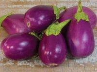 Баклажан Розита / Rosita Eggplant Solanum melongena