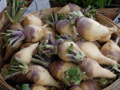 Брюква Красносельская Brassica napobrassica