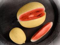 Арбуз Золотой малыш / Golden Midget watermelon / Citrullus lanatus