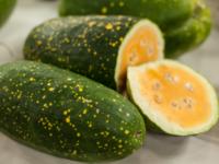 Арбуз Луна и звезды желтый / Moon and Stars Yellow Flesh Watermelon / Citrullus lanatus