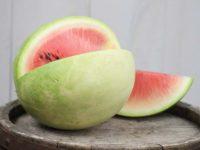 Арбуз Зима в Навахо Navajo Winter Watermelon