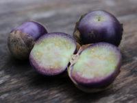 Физалис овощной Сливовый джем / Physalis philadelphica