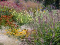 Сад в природном стиле